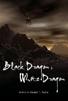Black Draon White Dragon Anthology Cover