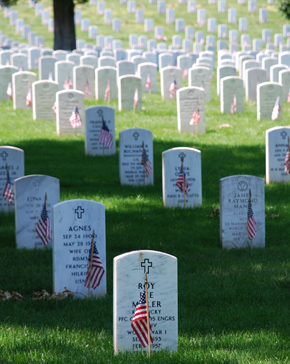 Graves at Arlington Cemetery on Memorial Day - 2008