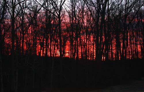 Rosy Fingered Dawn:  January 6, 2012
