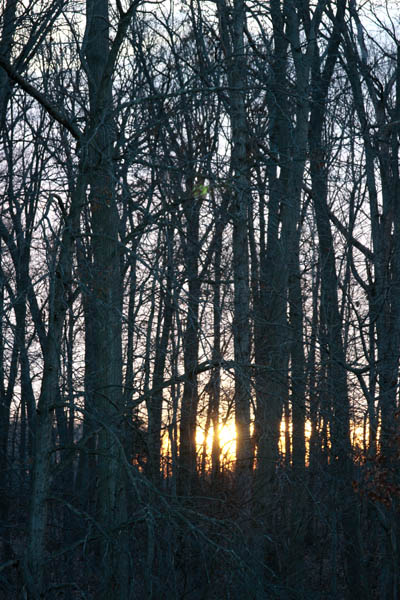 Sunrise by Kelly A. Harmon - January 6, 2012