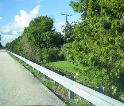 Guardrail along wooded roadside.