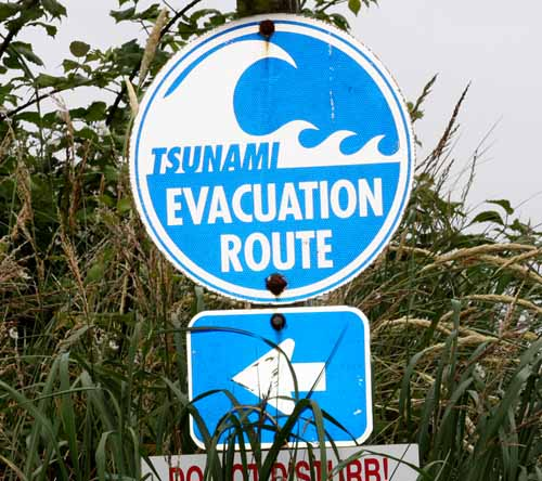 Photograph of a sign which reads: Tsunami Evacuation Route. An arrow points in the direction you should be going.