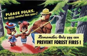"Smokey the Bear Painting by Russ Wetzel - 1947. Depicts Smokey the Bear and another young bear with the slogans ""PLEASE FOLKS be extra careful this year! Remember-Only you can PREVENT FOREST FIRES!"""